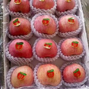 山东大型红富士苹果批发产地【13869906601】常年...