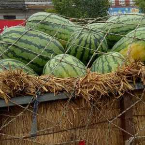 冠龙西瓜大量上市,沙土地种植口感好,质好价优,欢迎来电咨...