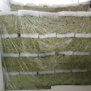 徐州市万亩蔬菜基地,小西芹大量上市,有需要的老板请联系,...