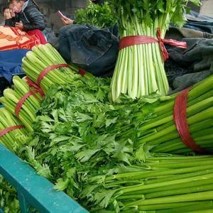 河北邯郸永年农产品批发市场,本地常年种植芹菜, 都是大棚...