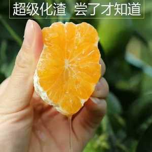 庐山西海易家河冰糖蜜橘皮肉厚甜如冰糖汁水丰富生津止渴!