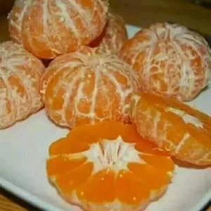 主要经营脐橙、长虹、纽荷尔、中华红、血橙、蜜柚、碰柑、蜜...