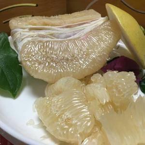 涫溪蜜柚大量出售中,有红心,白心,欢迎你亲临果园实地考察...