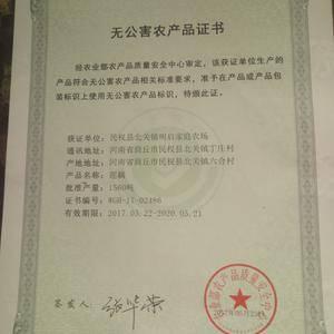 民权县生态原产地无公害莲藕