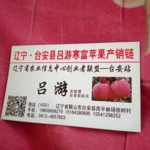寒富苹果,质优价廉!看质量定价格。吕游186098082...