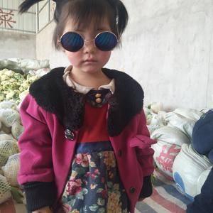 徐州沛县有机花菜大量上市了。联系人张陆187516368...