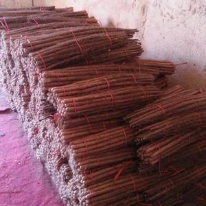 大量铁棍山药,日本白山药,九斤黄山药出售,欢迎联系