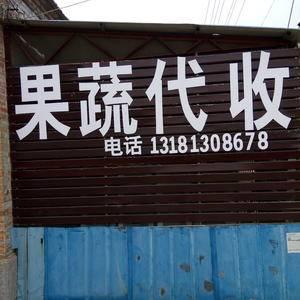 地址:山东省济宁市金乡县王丕镇三杨村,代办杨安新,联系电...