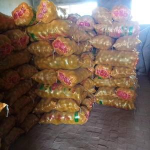 陕西定边郝滩土豆出售,价格便宜,要的联系。