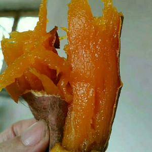 山东省,德州市,夏津县后赵地瓜种植基地,常年出售优质烟薯...