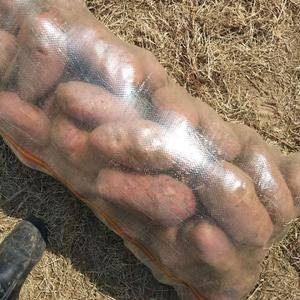 大量代购围场土豆。荷兰十四,十五。冀张薯12,226。薯...
