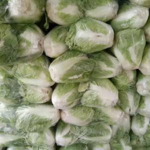 各种蔬菜大量上市中,需要的老板联系,1873919775...