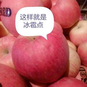 河南灵宝寺河苹果色泽红,品质好,