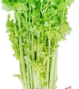 正宗马家沟芹菜,自家种的,都是自己留的种子,保证好吃。