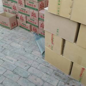 供应河北沧州金丝小枣电话 13393279989,河北沧...