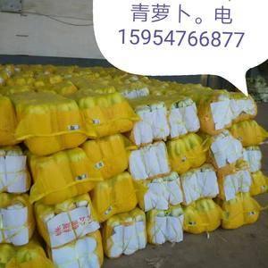北京三号大白菜热销中,包装齐全。货量大能持续到年后。发财...