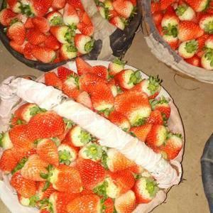 我处草莓已大量上市中,需要的联系15351655526