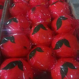 大量出售脐橙,纽荷尔,血橙,长虹!