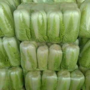 大量供应北京三号白菜,可根据客户需求加工各种包装,大量供...