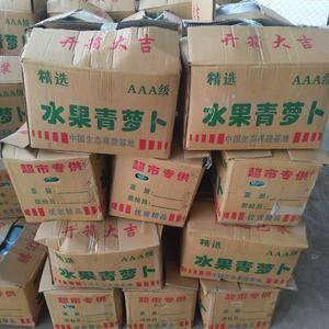 产区青萝卜大量供应,有水果萝卜菜萝卜两种,有透明袋和网代...