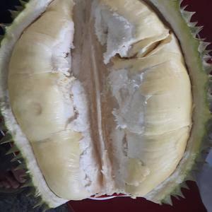 泰国一级金枕头榴莲