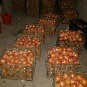 湖南省保靖具坝木村是一个椪柑生产基地年产椪柑几万万吨。需...