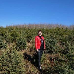 有大量绿化云杉出售,规格:0.5米~3米满足供应,长势喜...
