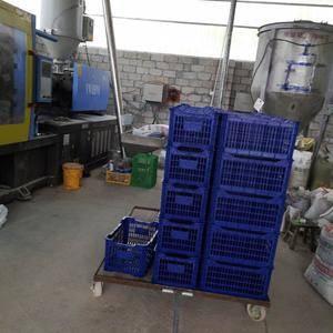 广西来宾金秀县沙糖桔大量上市,欢迎各大老板前来订购,15...