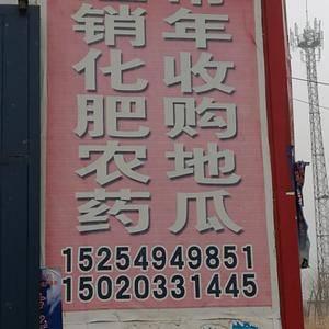 红苏八大量供应