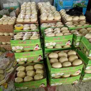 莘县香瓜基地广招各地商,最好吃的瓜在这里,精品包装,调车...