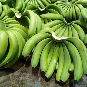 我是香蕉代办,可为你提供大量香蕉。