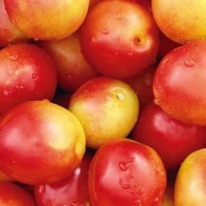 新鲜油桃,产地专供,品种多,价格实惠。182639584...