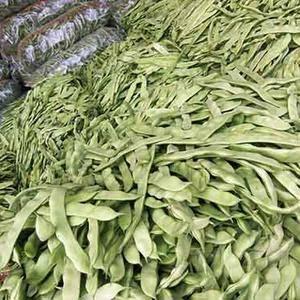 这里大量长豆角芸豆马上大量上市