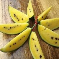 仁风西瓜已经批量上市,欢迎采摘,批量订货13006586...