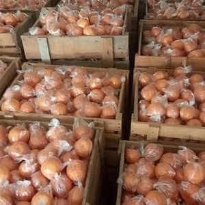 几十万斤桔子滞销,每家果农都有几万斤,希望来几个收购商销...