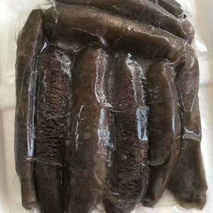 来自湛江市硇洲岛的天然海参,五添加无污染,需要的朋友赶紧...