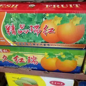 供应莘县香瓜:糖分高,口感好,欢迎大家前来采购15165...