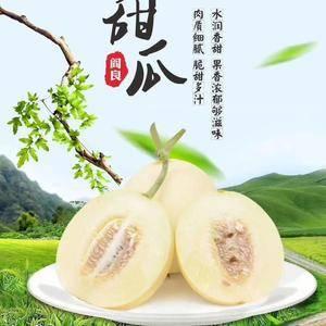 陕西省大荔县甜瓜上市了!品种有东方蜜,小仔,红阎良等,肉...