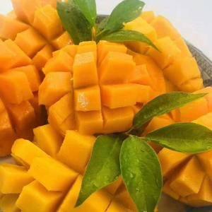 【圣德龙】芒果中的极品!原产地缅甸,淳朴而神秘的佛教国度...