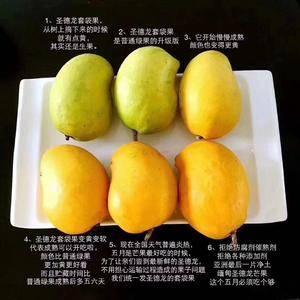 缅甸圣德龙芒果大量上市,承包万亩基地,有西瓜,菠萝,哈密...