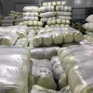 本处专业供应反季蔬菜,品种多有白菜、豆角、西红柿、芜湖椒...