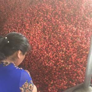 常年代收代办油桃 樱桃 草莓 葡萄等新鲜水果联系电话13...