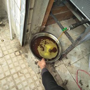 自榨菜籽油,设备先进,选项优质菜籽,详细,可打电话151...