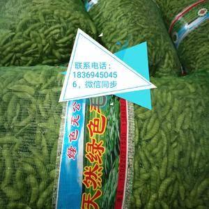 萬畝毛豆基地現有開心綠 翠綠寶毛豆大量上市中,可提供風選...