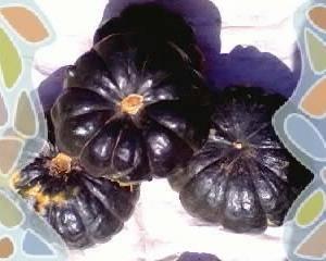 批发各种南瓜,粉质高,品质好,耐储运,价格随市场。