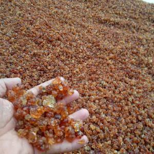 天然桃胶,品质高价格低,可代收,可发货。