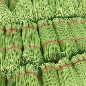 我处几百万亩长豆角大量上市,质量好,豆角长,颜色绿,有大...