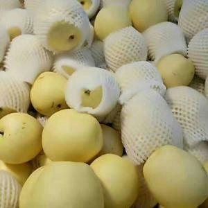 山东黄金梨,黄冠梨,丰水梨现已大量上市,口感脆甜,表光光...