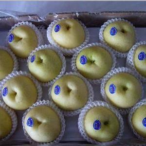 山东黄金梨,丰水梨产地大量上市了,美八苹果,嘎啦苹果,批...