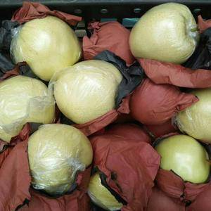 产地供应美八嘎啦红露金帅等苹果黄金梨大量上市